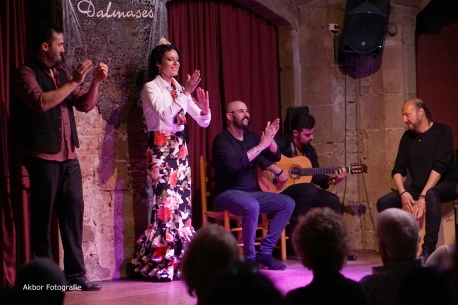20170504_Flamenco_PalauDalmases_003