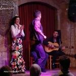20170504_Flamenco_PalauDalmases_012