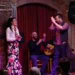 20170504_Flamenco_PalauDalmases_015