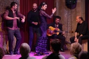 20170504_Flamenco_PalauDalmases_033