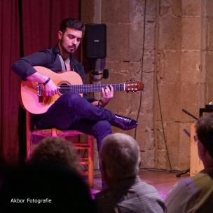 20170504_Flamenco_PalauDalmases_059