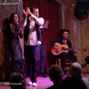 20170504_Flamenco_PalauDalmases_076