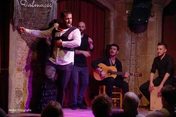 20170504_Flamenco_PalauDalmases_080